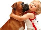 Sfaturi practice - Copiii şi animalele de companie