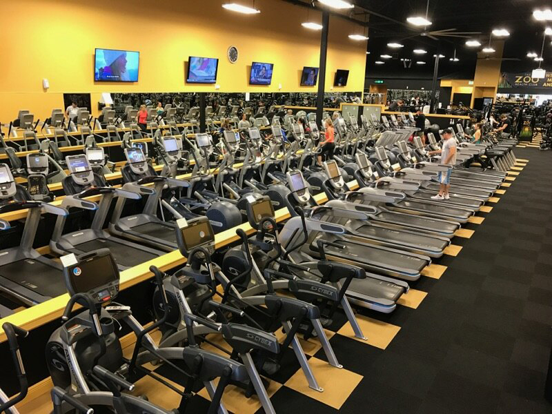 zoo health club oviedo fitness franchise opportunity