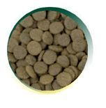 Mangus del Sole - Dog Grain Free Agnello Patata Dolce. 12kg