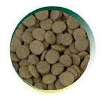 Mangus del Sole - Dog Grain Free Small B. Agnello Patata Dolce. 2kg