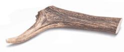 Bestbone – Corna di Cervo. 16x4,5x4,5 cm