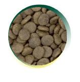 Mangus del Sole - Dog Grain Free Senior Tacchino Patata Dolce. 2kg