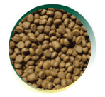Mangus del Sole - Cat Superpremium Kitten Carni Bianche. 7,5kg