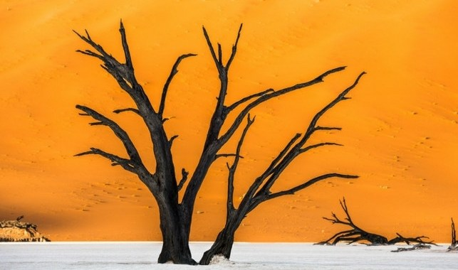 Il sogno della Namibia