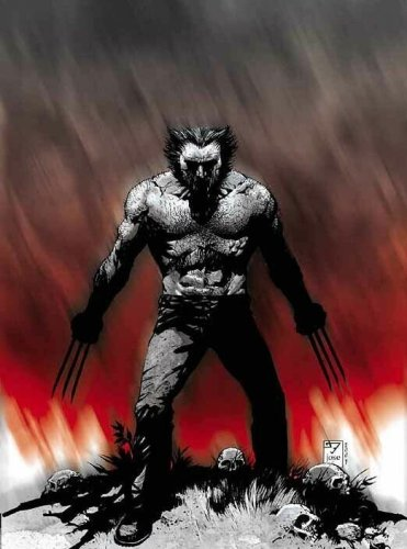 Wolverine in Red