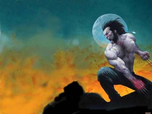 Wolverine – moon