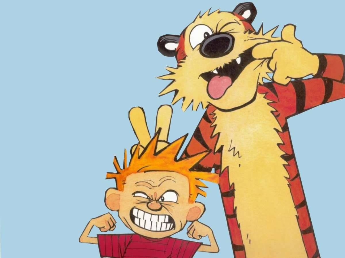 Calvin and hobbes funny faces Zoom Comics Daily