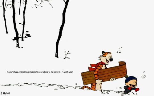 calvin and hobbes – something incredible