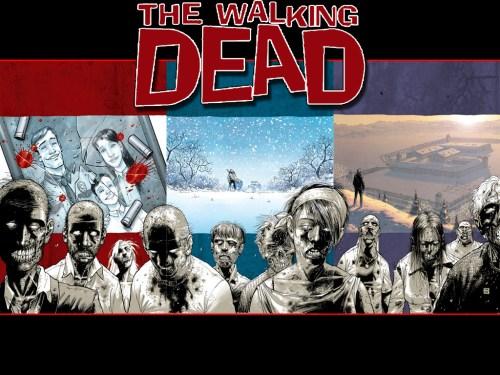 walking dead – overview