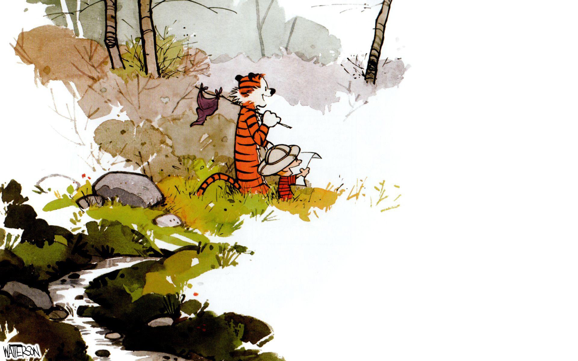 Calvin And Hobbes Final Panel Zoom Comics
