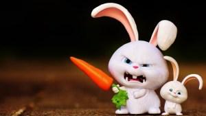 Angry Funny Bunny
