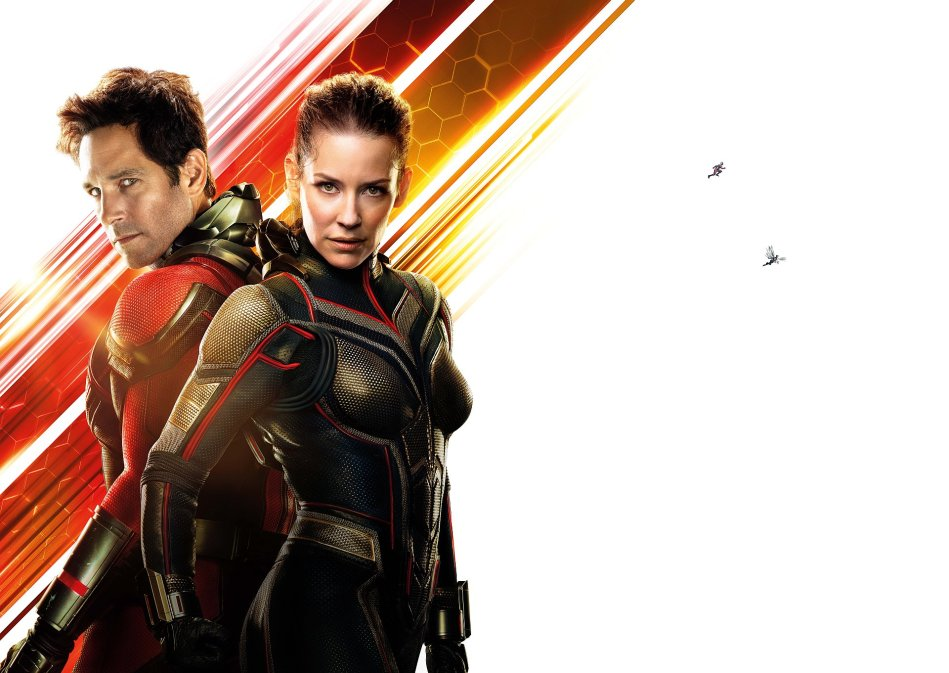 Ant Man And The Wasp Wallpaper Zoom Comics Daily Comic Book