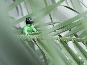 LEGO Hulk in the brush