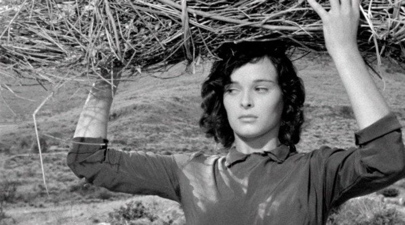 """""""Lo schermo è donna"""": dal 18 giugno a Fiano Romano il cinema si tinge di rosa"""