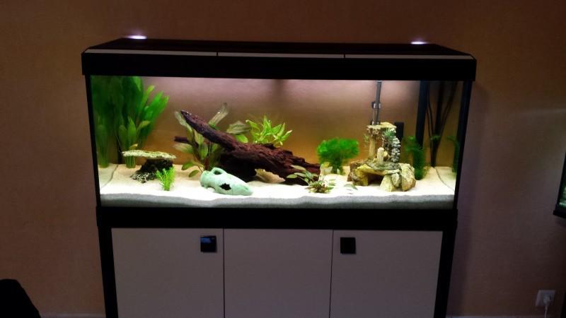 Meuble Fait Maison Pour Aquarium Ventana Blog