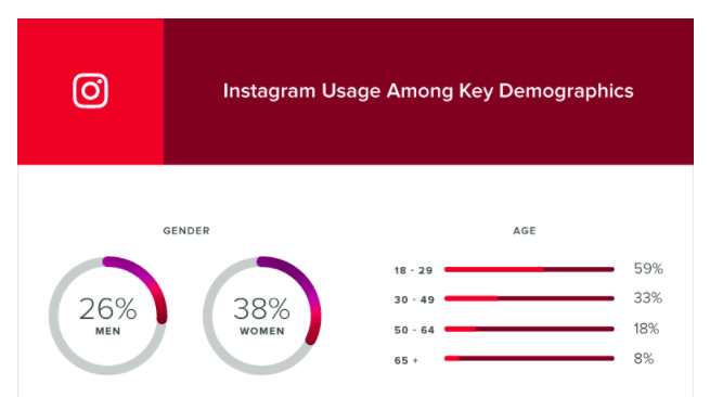 1i.2. Instagram Demographics