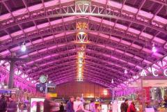 Copyright : DR / Gare de Lille Flandres en rose
