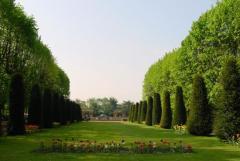 Copyright : DR / Daniel Rapaich - Ville de Lille / Jardin des Plantes
