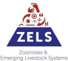 ZELS_image