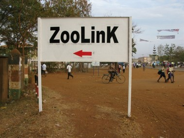Zoolink project image