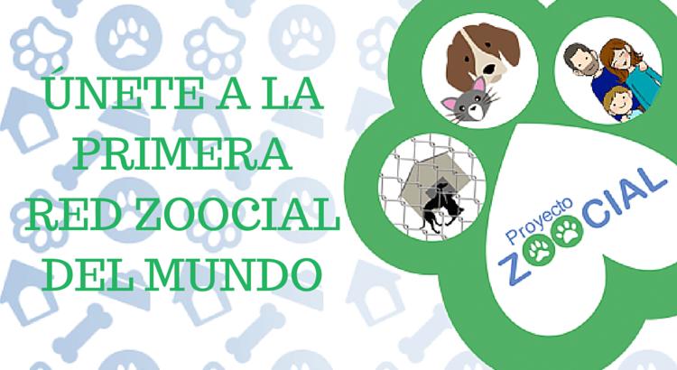 Ayudar a los animales es el objetivo del Proyecto Zoocial