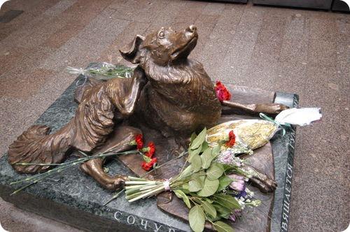 Памятник убитой бездомной собаке