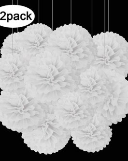 12pcs White Hanging Tissue Paper Pom Poms Decorations for Party Ceiling Wall Tissue Flowers Decorations – 1 Color of 12 Inch, 10 Inch