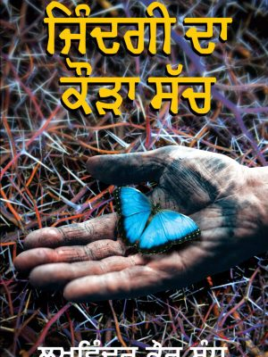 book in punjabi