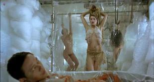 Laetitia Casta nude bush and briefly nude topless - Visage (2009)