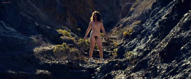 Gaby Hoffmann nude full frontal - Crystal Fairy & the Magical Cactus (2013) hd1080p (3)