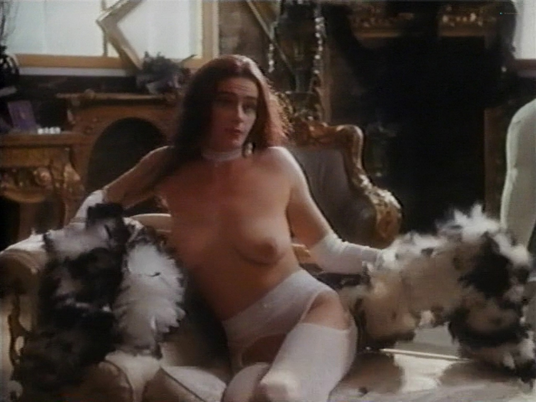 Shannon Whirry nude Elizabeth Sandifer and Shannon McLeod all nude and sex in - Animal Instincts II (1994) (14)