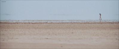 Mia Wasikowska nude skinny dipping - Tracks (2013) hd1080p (4)