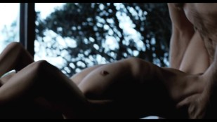 Carice van Houten nude and hot sex - Black Butterflies (NL-2011) hd1080p BluRay