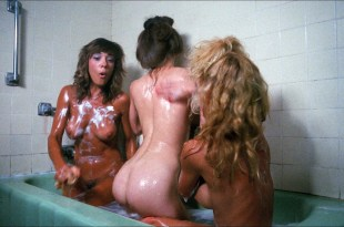 Michelle Bauer nude bush, Linnea Quigley and Brinke Stevens nude and wet - Nightmare Sisters (1988) HD1080p