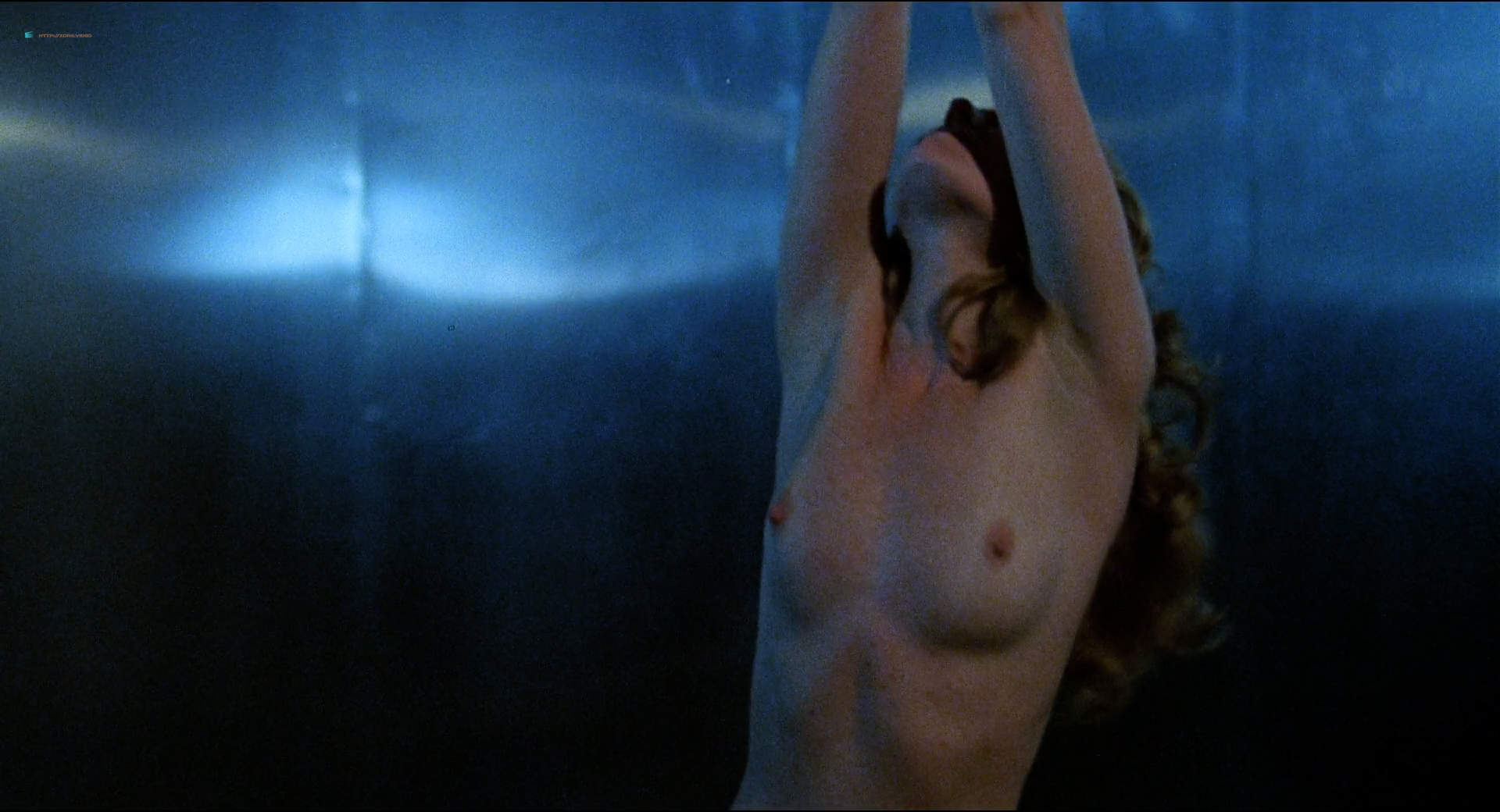 Johanna Brushay nude full frontal - Don't Go In The House (US 1980) HD 1080p (2)
