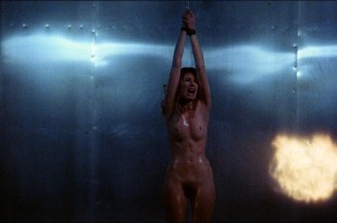 Johanna Brushay nude full frontal – Don't Go In The House (US 1980) HD 1080p