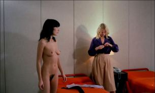 Brigitte Lahaie nude full frontal Dominique Journet, Cathy Stewart all nude and sex - The Night of the Hunted (FR-1980) HD 1080p (10)