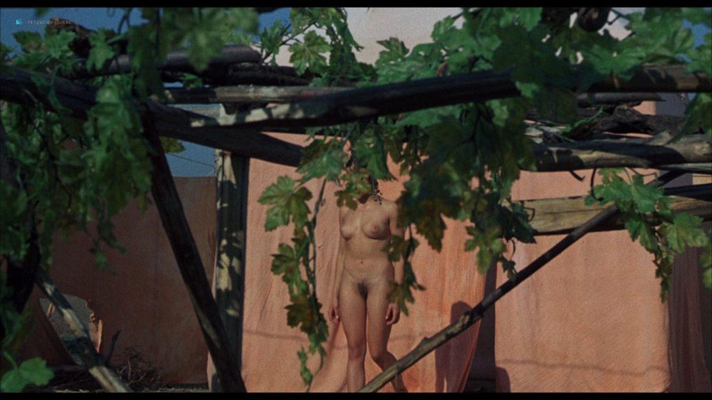 Ines Pellegrini nude full frontal Barbara Grandi and others nude explicit - Arabian Nights (1974) HD 1080p BluRay (r) (9)
