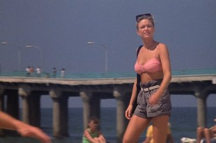 Courtney Thorne-Smith hot and sexy Harley Jane Kozak nipples and sex - Side Out (1990) HD 1080p Web (7)