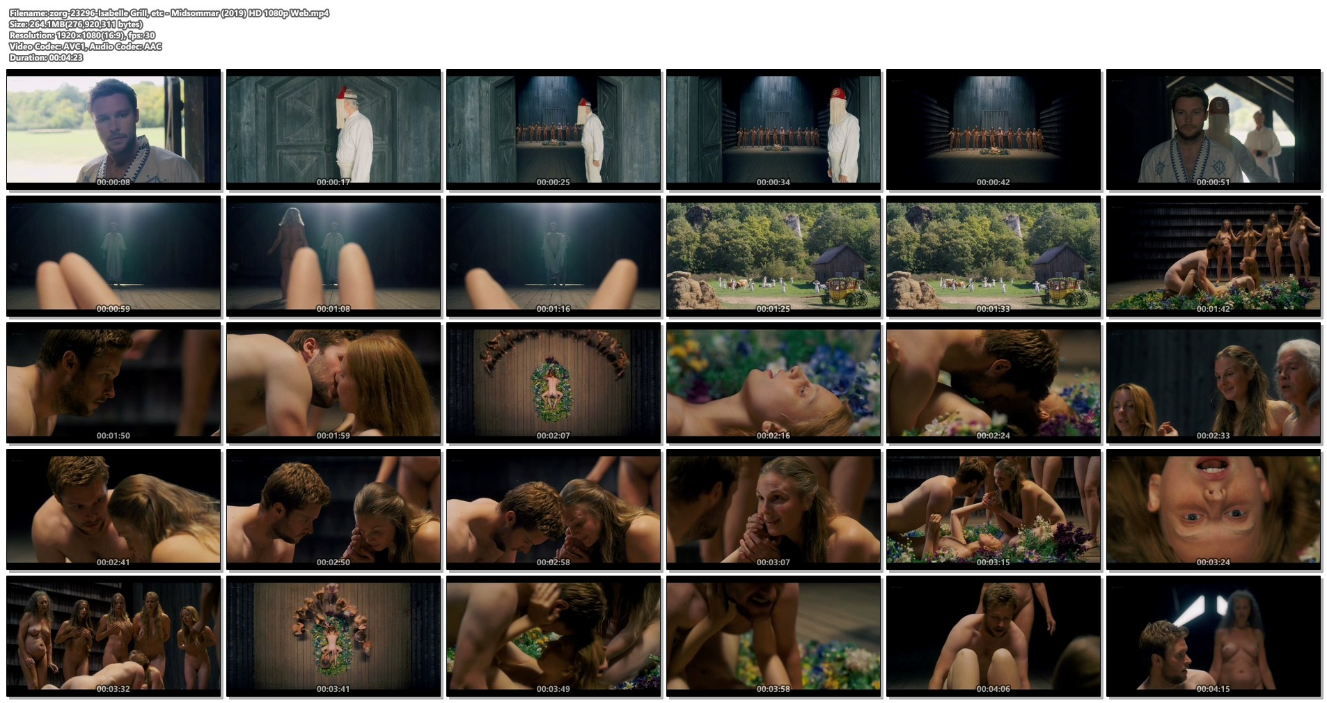 Isabelle Grill nude sex others nude full frontal - Midsommar (2019) HD 1080p Web (1)