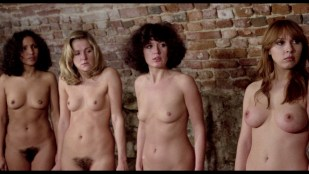 Macha Magall nude sex Brigitte Skay nude full frontal explicit - The Beast in Heat (1977) HD 1080p BluRay (r)