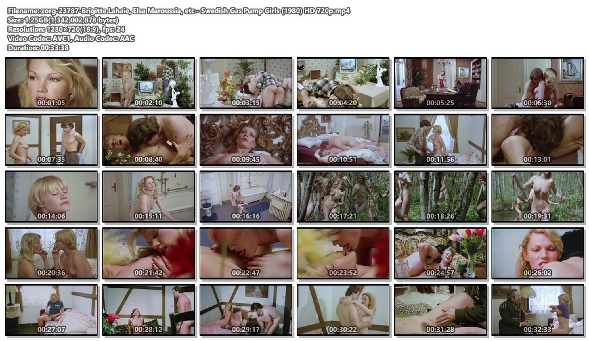 Brigitte Lahaie nude sex Elsa Maroussia and other lots of sex - Swedish Gas Pump Girls (1980) HD 720p BluRay (1)
