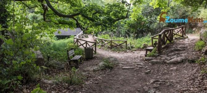 Φαράγγι των Μύλων: Ο εγκαταλελειμμένος παράδεισος δίπλα στη πόλη