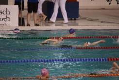 ZPC_Nederweert-Swim-cup002