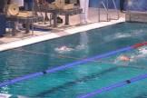 ZPC_Nederweert-Swim-cup028