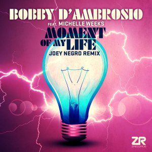 Moment Of My Life (Joey Negro Remixes) Bobby D'Ambrosio, Michelle Weeks