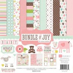 Набір паперу Bundle of Joy Girl, 30х30 см, Echo Park, BJG45016