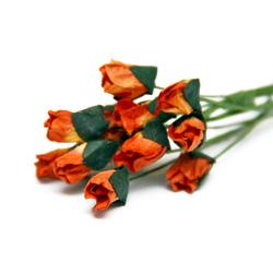 Букет троянд Petite Rosebud Apricot, 12 шт, BRB1494AP