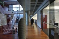 Dentro do SAP Labs: iluminação natural e piso de madeira certificado