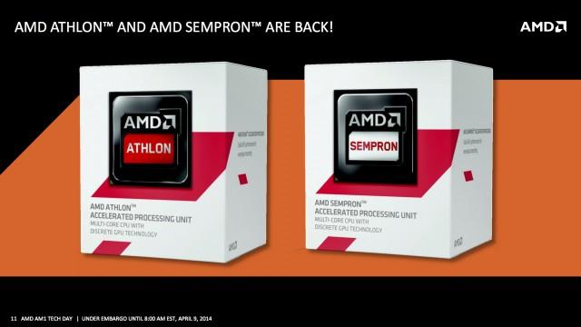 AMD - 04